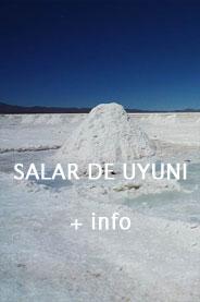 ico-salar
